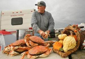 Fred Stewart, of Woodland cleans crabs he caught in Bodega Bay while camping at the Doran Beach campground. Stewart and his family have been camping and crab fishing the past 34 Thanksgiving weekends.